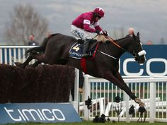 Don Cossack leads the field on route to winning the 2016 Cheltenham Gold Cup.