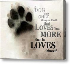 'True Love - Dog Art - By Sharon Cummings Words by Billings' Art Print by Sharon Cummings I Love Dogs, Puppy Love, Pet Loss Grief, Thing 1, Love You More Than, Dog Quotes, Faith Quotes, Wisdom Quotes, Beautiful Dogs