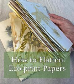 How to Flatten Eco-print Papers — Carol Ann Webster Sun Prints, Leaf Prints, Viva Paper Towels, Fabric Dyeing Techniques, Art Techniques, Natural Dye Fabric, Natural Dyeing, Autumn Leaves Craft, Carol Ann