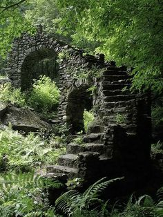 Photography, castle wall in the forest, high gloss, premium paper, signed - Fotografie - Natur Abandoned Buildings, Abandoned Places, Abandoned Castles, Castle Wall, Castle Ruins, Medieval Castle, Stairway To Heaven, Belle Photo, Stairways