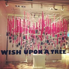 wish upon a tree...  what would be your wish?