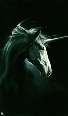 Wojtek Siudmak - unicorn  Posted on Facebook.com/ArtfulExistence