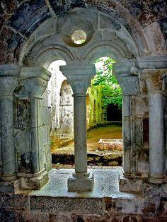 la Celle - Abbaye - Colonnes vues de l'intérieur ( Var - 83 - France )