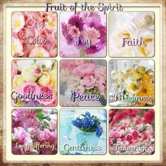 The Fruits of the Spirit   Galatians 5:22-23  But the fruit of the Spirit is love, joy, peace, longsuffering, gentleness, goodness, faith, Meekness, temperance:  against such there is no law.
