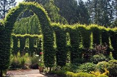 Heronswood Gardens - Six New Seattle Tourist Attractions | Seattle Met