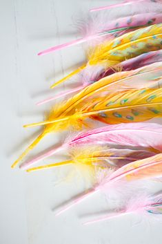 (diy painted feather)