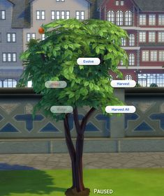 Mod The Sims - Harvestable Peach Tree