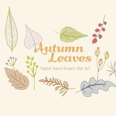 Autumn Leaves  Digital Hand Drawn Clip Art by CreateTheCut on Etsy, £3.50
