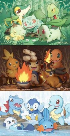 ¡Cada cual con su fiesta!  #anime #pokemon #bulbasaur #charmander #squirtle # chikorita #cyndaquil #totodile #mudkip #torchic #treecko #turtwig #chimchar #piplup #tepig #snivy #oshawott #fiesta #incial #fuego #agua #planta