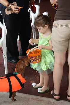 Sabal Chase Animal Clinic Pet Halloween Costume Party Miami, FL #Kids #Events