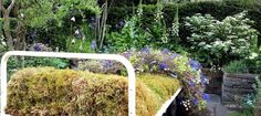 The Garden Bed - a partnership with Asda, was designed by Stephen Welch and Alison Doxey, the garden was built by Frosts Landscapes. The RHS judges awarded this Artisan Garden a Gold Medal, at The RHS Chelsea Flower Show