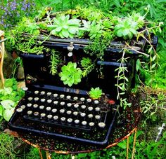 Typewriter planter. Oh my God! I'd love to do this but I adore vintage typewriters, I'm not sure I could do this. I'd have one on my desk to just LOOK at if it wasn't functional!