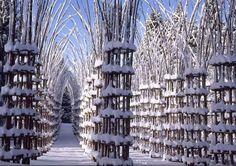 De houten kathedraal van Orobie, het laatste werk van Giuliano Mauri