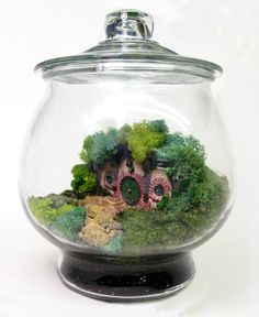 The Shire Hobbit Home Terrarium. This is so cute it makes me want something that lives in a terrarium, lol!