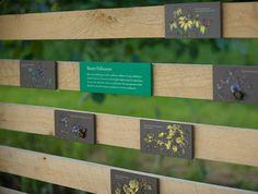 Longwood Gardens Meadow - Gecko Group