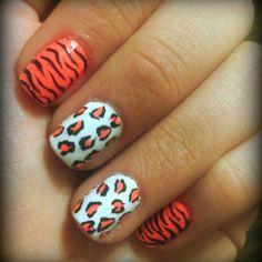 zebra and cheeta perfect