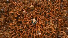 Game of Thrones Mhysa : Dark Matter Zine Bran Stark, Game Of Thrones Houses, Game Of Thrones Art, Khaleesi, Daenerys Targaryen, Stranger Things, Dany And Jon, Game Of Thrones Winter, Film Streaming Vf