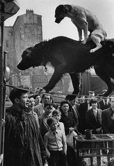Paris 1953 Photo: Marc Riboud