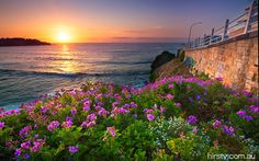 Looking for things to do on your next holiday? Wotif has deals on cheap tickets for tours and activities in thousands of destinations. Bondi Beach Sydney, Sydney Beaches, Beautiful World, Beautiful Images, Beautiful Things, Great Places, Places To See, Photo Archive, Travel Images