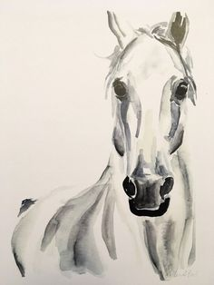 Items similar to White Horse Watercolor PRINT on Etsy Watercolor Horse, Easy Watercolor, Watercolor Animals, Watercolor Print, Watercolor Paintings, Pastel Paintings, Watercolors, Easy Horse Drawing, Horse Drawings