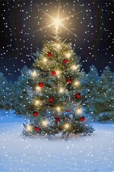 Tree lit up for Christmas (GIF) Noel Christmas, Christmas Images, Christmas Wishes, Winter Christmas, Vintage Christmas, Xmas, Animated Christmas Pictures, Theme Noel, Christmas Paintings