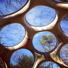 Looking up, through a Buckminster Fuller geodesic dome.