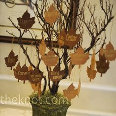 Could be used for Thanksgiving.  You put what you are thankful for on each leaf and hang it on a branch.
