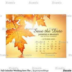 A fall save the date postcard with calendar and orange leaves. Perfect for an autumn or fall leaves themed wedding. Invitations, RSVP cards and additional products are available for this wedding invitation set. Fall Wedding Invitations, Save The Date Invitations, Save The Date Postcards, Save The Date Cards, Wedding Calendar, Orange Leaf, Wedding Announcements, Wedding Save The Dates, Wedding Planning