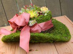 Centrotavola succulenta Garden Party nozze succulente di tobieanne