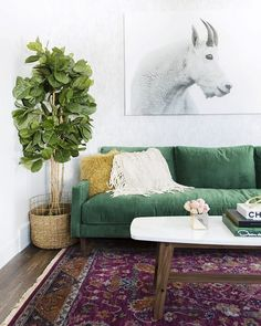Love the picture!!!! - The Couch Trend for 2017: Stylish Emerald Green Sofas | Apartment Therapy