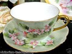German Rosenthal Hand Painted Tea Cup and Saucer
