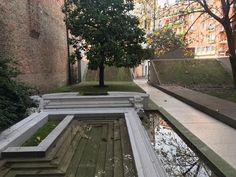 #carloscarpa wonderful garden!