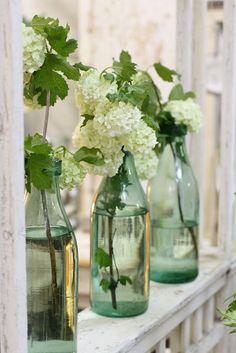 Limelight Hydrangeas in bottles