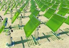 photobioreactor spirulina - Cerca amb Google