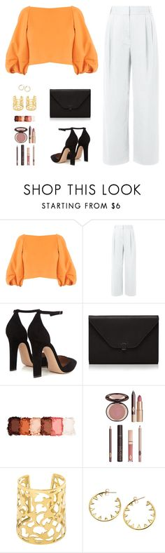 """Sin título #4689"" by mdmsb on Polyvore featuring moda, TIBI, Gianvito Rossi, Valextra, NYX y Charlotte Tilbury"