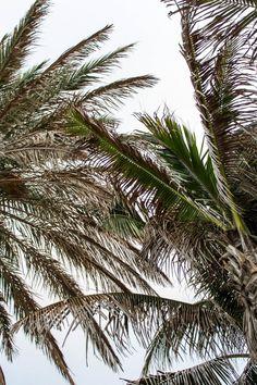 Summer Sun Protection Guide/Never Without Lipstick/sunscreen, sun protection, how to apply sunscreen, best sunscreen, supergoop, best supergoop products, supergoop reviews, sun safety, beachwear, beach prep, beach outfits, beach bag essentials, eau palm beach resort, what to do in palm beach, palm beach, palm beach photography