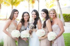 Destination Turks and Caicos Wedding at Blue Haven Resort by Paradise Photography Beach Weddings, Destination Weddings, Wedding Hair And Makeup, Hair Makeup, Turks And Caicos Wedding, Wedding Blue, Bridesmaid Dresses, Wedding Dresses, Caribbean