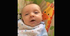 Il dit son premier mot à 7 semaines seulement!  http://rienquedugratuit.ca/videos/il-dit-son-premier-mot-a-7-semaines-seulement/