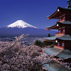 http://esromart.hubpages.com/hub/Enjoy-Vacation-Japan-with-Children-and-Family