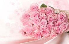 ♥♥ 2 doz Beautiful Delicate Pink Roses...