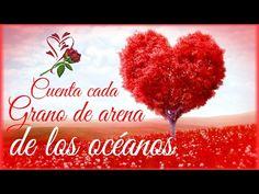 ¡TE AMO! ♥ Corazón, frases y Rosas en Movimiento con Musica romántica | Para Dedicar - YouTube