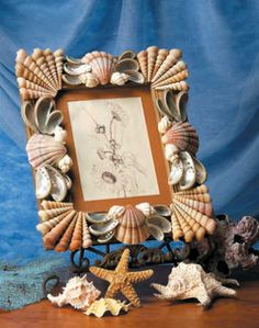 Frame / Seashell Sensations Shell Book by Nancy Flodine Seashell Frame, Seashell Art, Seashell Crafts, Seashell Picture Frames, Sea Crafts, Nature Crafts, Crafts To Do, Book Crafts, Seashell Projects