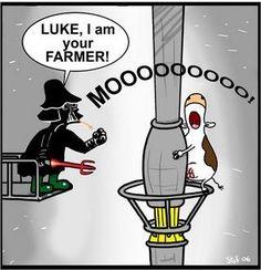Funny Star Wars. Luke, I am your farmer. Moo! hahahahahaha