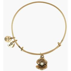 Alex and Ani 'Oyster' Charm Expandable Bangle ($38) ❤ liked on Polyvore featuring jewelry, bracelets, russian gold, charm bracelet bangle, hinged bangle bracelet, bracelets & bangles, alex and ani bracelet and charm bangle