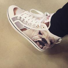 #newkicks Adidas Bulldog Sneakers !