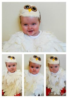 No Sew Baby Owl Costume - Girl Loves Glam. I like this headpiece best so far