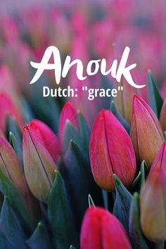 """Anouk is pronounced ah-NOOK and is a Dutch/French variation of the name Anna meaning """"grace"""". It was not ranked in the top 1000 baby names for girls in 2018 so it is definitely unique. Modern Baby Girl Names, Unique Baby Names, Rare Names, Writing Resources, Nook, Dutch, French, Lettering, Zug"""