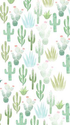 Summer wallpaper #cactus Iphone Wallpaper Green, Phone Wallpaper Images, Summer Wallpaper, Trendy Wallpaper, Cartoon Wallpaper, Cute Wallpapers, Wallpaper Backgrounds, Cactus Backgrounds, Wallpaper Lockscreen