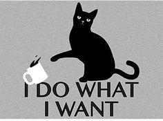 I Do What I Want T-Shirt SnorgTees // cat knocking over coffee mug. Very smug cat tee. I Do What I Want T-Shirt SnorgTees // cat knocking over coffee mug. Very smug cat tee. I Love Cats, Cute Cats, Funny Cats, Funny Animals, Cute Animals, Cats Humor, Funny Humor, Crazy Cat Lady, Crazy Cats