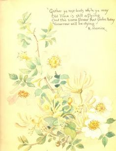"""Edith Holden - - """"Gather ye rose-buds while ye may // Old Time is still aflying // And this same flower that smiles today // Tomorrow will be dying"""" R. Herrick"""